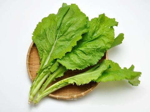 Karashina (mustard green)